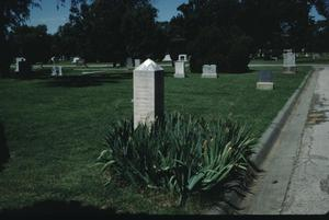 Primary view of object titled '[Llano Cemetery, (obelisk monument w/ iris)]'.