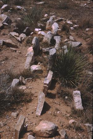 Primary view of object titled '[Antelope Creek Site, (excavated wall of structure)]'.
