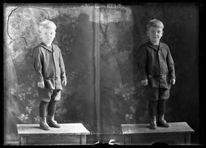 Primary view of object titled '[Portraits of Young Boy]'.