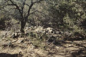 Primary view of object titled '[Barton Creek]'.