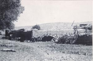 Primary view of object titled '[Faver Ranch - Cibolo]'.