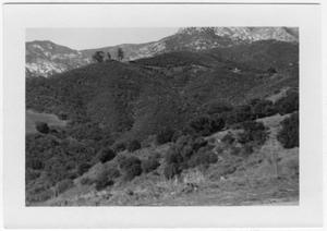 Primary view of object titled '[Unidentified Hillside]'.