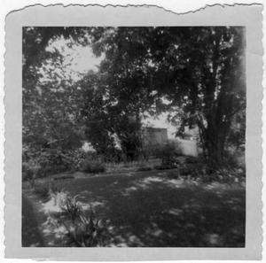 Primary view of object titled '[William Blackshear's Garden]'.